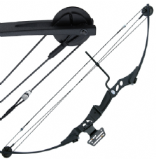 Hotaka Compound Bow